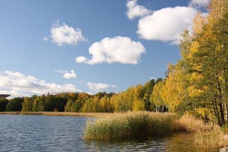 Sea shore in Helsinki, on a beautiful autumn day Stock Photo
