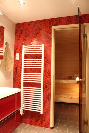 Modern Finnish bathroom with sauna, red tiles and heater Stock Photo - 13057056