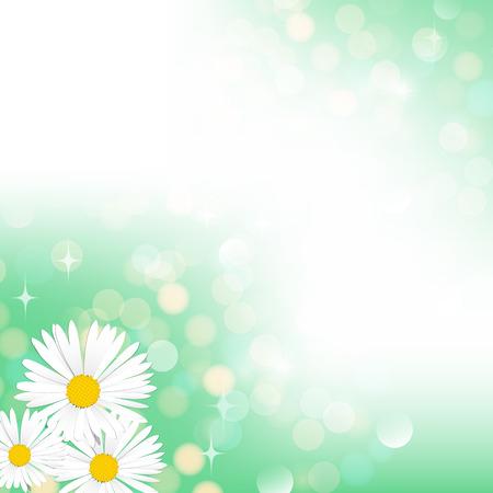 camomiles macro: Spring green bokeh vector camomile background banner postcard Illustration