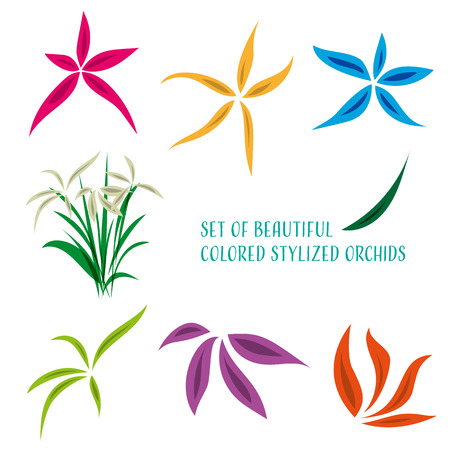 sutra: Set of beautiful colored stylized orchid flowers