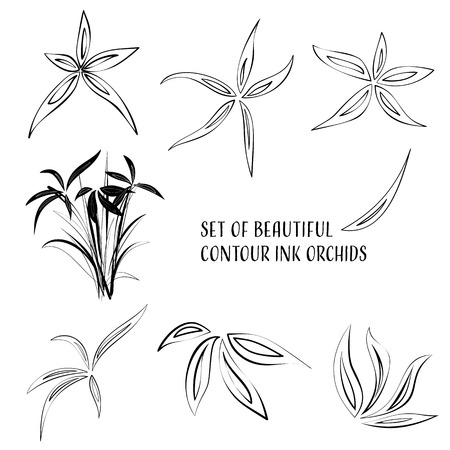 Set of beautiful contour ink orchid flowers Illustration