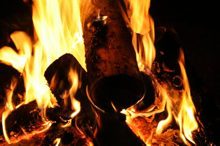 bon: Closeup view of burning camp bonfire in the night