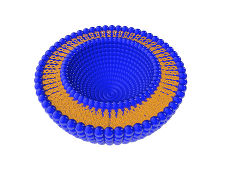lipid: Medical 3D illustration of liposomes bi-layer structure isolated on white background