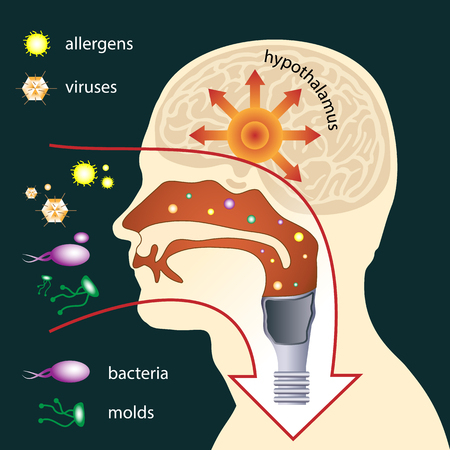 Scheme of penetration of parasites into the human body through respiratory system. The mucous membrane acts as the first line of defense. Medical illustration Illustration