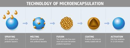 Illustration schématique du processus technologique de la microencapsulation de bactéries probiotiques