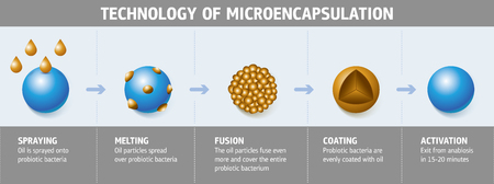 Schematic illustration of the technologic process of probiotic bacteria microencapsulation