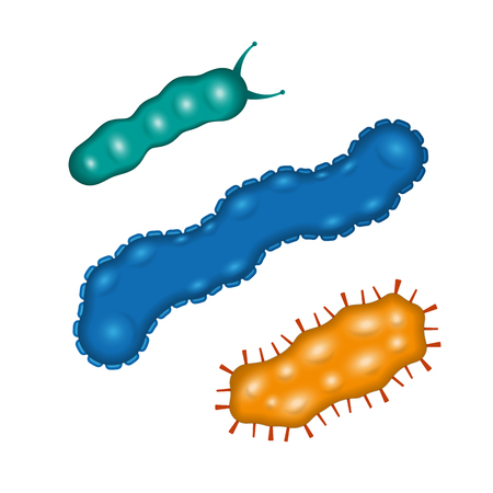 Bacteria and germs colorful set, micro-organisms disease-causing objects, different types, bacteria, viruses, fungi, protozoa. Vector flat style cartoon illustration isolated on white background