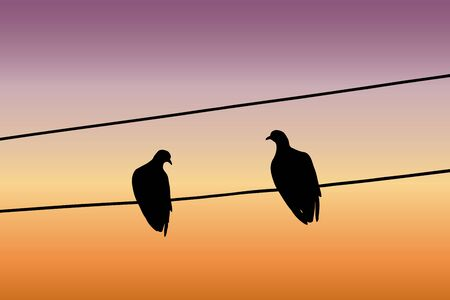 Silhouettes of two pigeons sitting on a wire and looking at each other against the sunset sky. Vector illustration