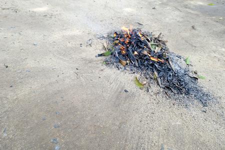 Sweep leaves and burn leaves stack in the garden Zdjęcie Seryjne