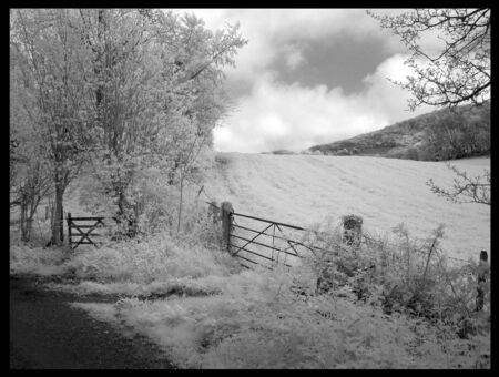 infra red: Infra Red South Downs Gate
