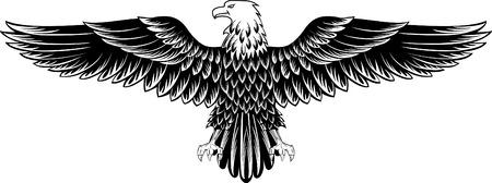 orzeł: Obrazu wektorowego of an eagle ze skrzydeł straightened  Ilustracja