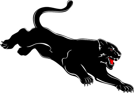 black panthers: Vector image attacking black panther