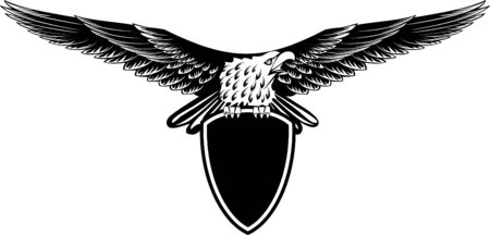 image eagle with straightened wings  Illustration