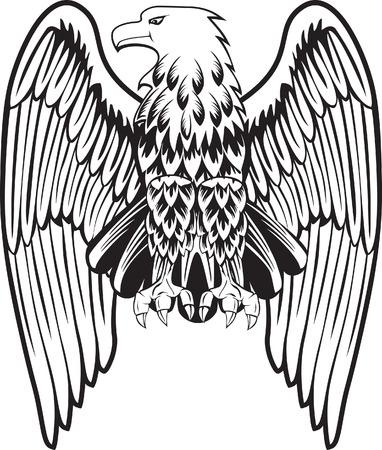 halcones: �guila con las alas de disminuci�n