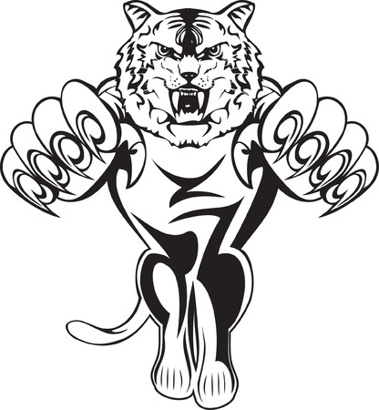 image attacking tiger Vector