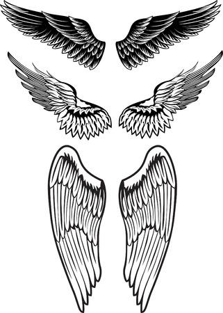 image wings