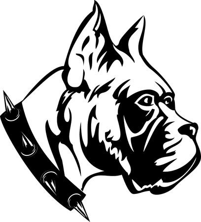 perro boxer: imagen en blanco negro de perro de raza boxeador