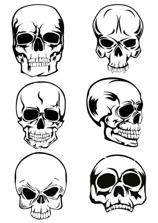 tete de mort: The vector image of skull of various kinds Illustration