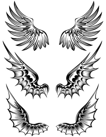 various wings Stock Vector - 9181561