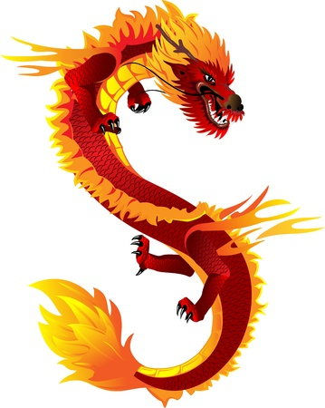 dragon tattoo: The vector image of  head of the Asian dragon Illustration