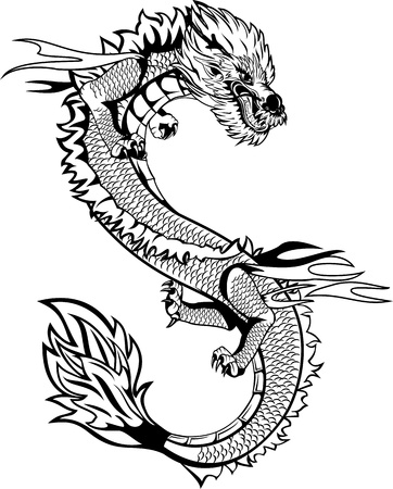dragon tattoo design: The vector image of  head of the Asian dragon Illustration