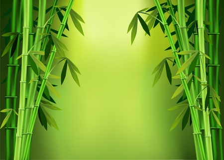 Vector images of stalks of bamboo Stock Illustratie