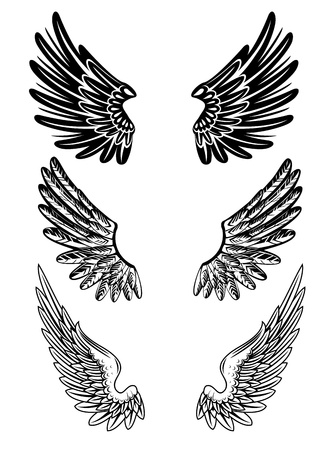 tatouage ange: image de diff�rentes ailes Illustration