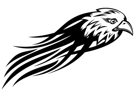 abstrakt: Vector illustration head eagle sketch tattoo