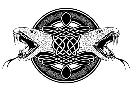 celtic culture: The image of head of snake and Celtic patterns Illustration