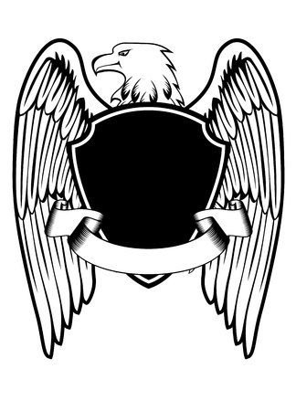orzeł: ilustracja eagle i wyżywienie