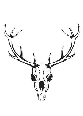 an illustration of skull of an artiodactyl animal with horns Stock Illustratie