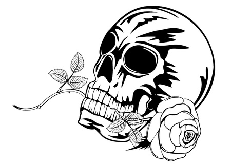 image skull with rose in teeth Vector