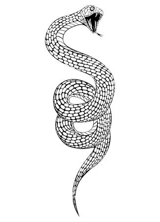 serpiente de cascabel: ilustraci�n de la serpiente con la boca abierta Vectores