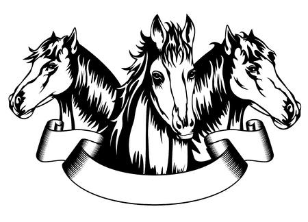 merrie: Vector illustratie hoofden paarden en banner