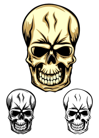 Vector illustration human skull set Stock Vector - 15975044