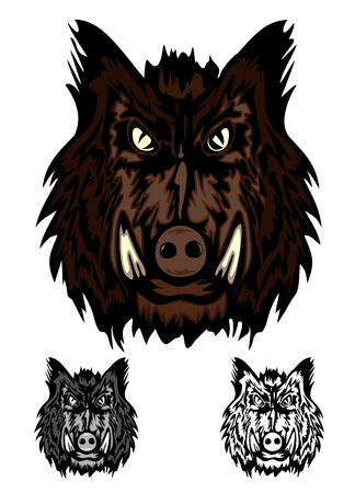 sanglier: tête d'image sanglier agressif sauvage Illustration