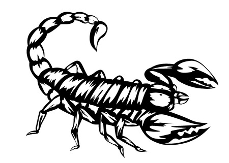 Illustration of black scorpion Vector