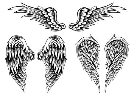 Abstract illustration wings set Vector