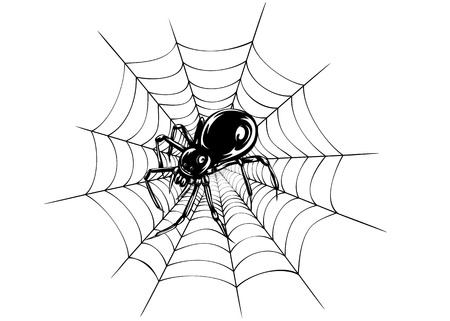 Abstract vector illustration black spider and web Illustration