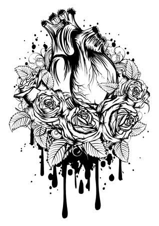 Illustrazione vettoriale astratta cuore umano con rose