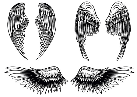 tattoo wings: Abstract vector illustration wings set
