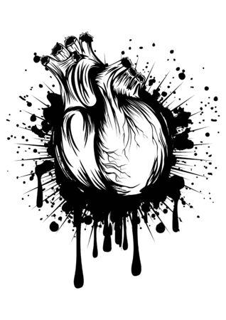 Abstract illustrazione vettoriale del cuore umano su grunge spruzzata