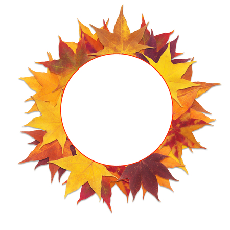 Round frame with red and yellow maple leaves isolated on white background