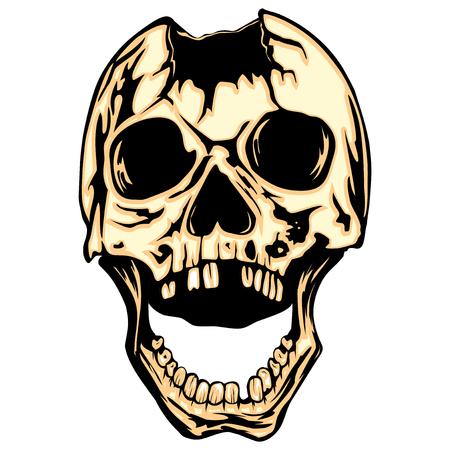 Vector illustration color grunge skull
