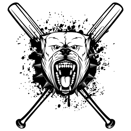 Vector illustration of aggressive snarling dog breed pit bull with an open mouth. Head pitbull with collar with spikes on crossed baseball bats. Illustration