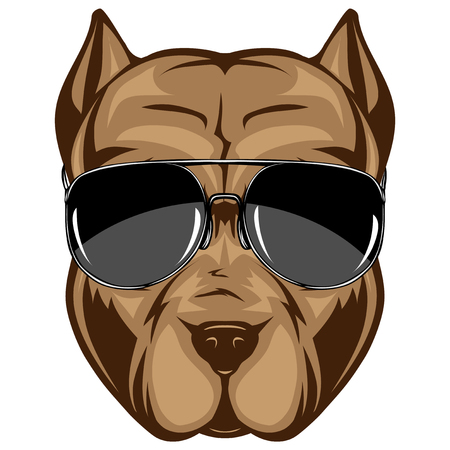 Abstract vector color illustration portrait of fighting dogs. Head of dog breed pit bull in sunglasses. Illusztráció