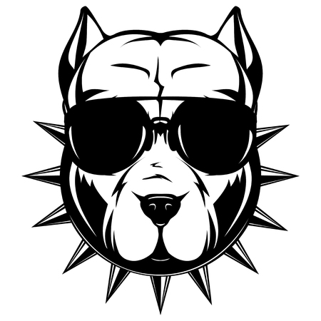 Abstract vector black and white illustration portrait of fighting dogs. Head of dog breed pit bull in sunglasses and collar with spikes. Reklamní fotografie - 88892938