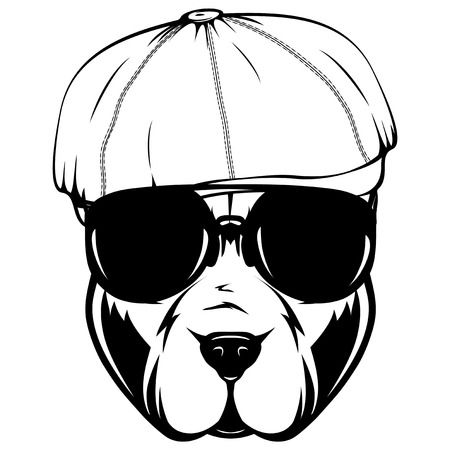 Abstract vector black and white illustration portrait of fighting dogs in cap. Head of dog breed pit bull in sunglasses.
