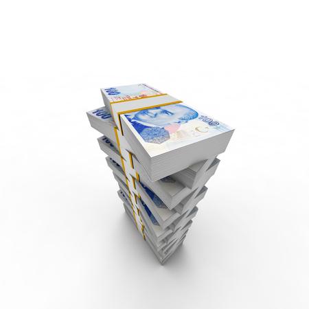 recursos financieros: la descripción de los recursos financieros de la torre de liras