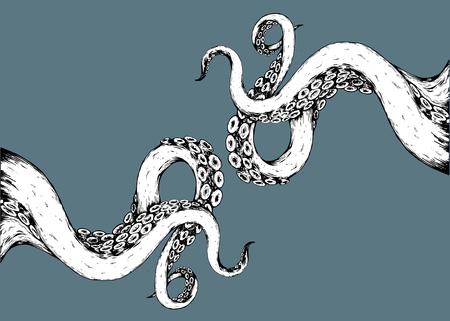 octopus dessiné main dessinée